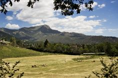 Explore Ayto. de Navacerrada photos on Flickr. Ayto. de Navacerrada has uploaded 2307 photos to Flickr.