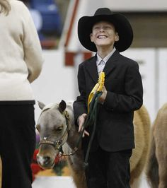 Home ⋆ Little America Miniature Horses Fort Worth Stock Show, Farm Animals, Cute Animals, Kids Cowboy Boots, Show Cattle, Show Photos, Show Horses, Livestock, Ponies