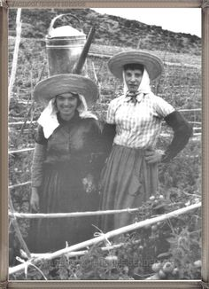 Alcala- agricultoras - año 1960.... #canariasantigua #blancoynegro #fotosdelpasado #fotosdelrecuerdo #recuerdosdelpasado #fotosdecanariasantigua #islascanarias #tenerifesenderos