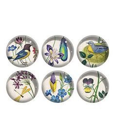 Take a look at this Meadow Glass Magnet Set by Fringe Studio on #zulily today! $14 !!