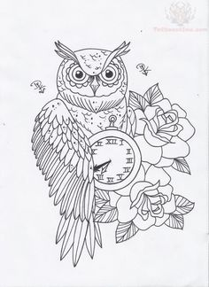 Owl and watch