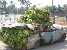 Life in Africa -- Bananas anyone? Vacation Places, Dream Vacations, Vacation Spots, Places To Travel, Places Around The World, Around The Worlds, Beautiful World, Beautiful Places, Amazing Places