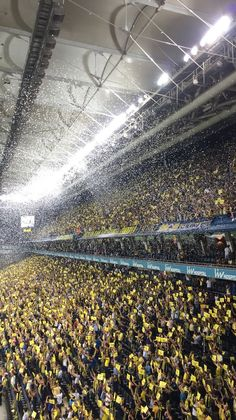 Fenerbahçe Taraftarı - Best of Wallpapers for Andriod and ios Blog Wallpaper, Galaxy Wallpaper, Huawei Wallpapers, Sports Clubs, Budget Planner, Under The Sea, Instagram Story, Most Beautiful Pictures, Saving Money
