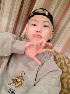 Finally here rrrrrrrrrrrr. Woozi, Jeonghan, Wild Hamsters, Star In Japanese, Won Woo, Hoshi Seventeen, Korean Boy, Chubby Cheeks, Pledis Entertainment