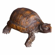 Wyld Home Hercules Tortoise: Hercules is quite the dapper estudinidae about town with a very cheeky glint in is beady eye. We love to see him peering out from behind the botanicals looking for his next bit of pretend lettuce.