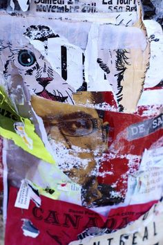 montreal vignettes - Ian Rogers