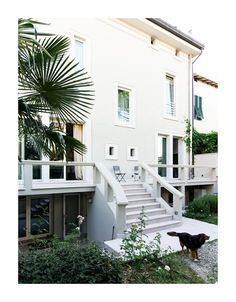 Residenza Privata A. Pucci, Zen, Villa, Stairs, Architects, Projects, Plants, House, Home Decor
