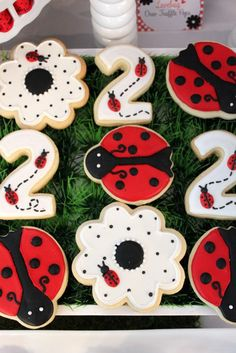 Lady bug themed treats will be a definite hit at your little one's birthday party celebration. First Birthday Parties, Birthday Celebration, Birthday Party Themes, Frozen Birthday, Birthday Ideas, 3rd Birthday, Ladybug Cookies, Cute Cookies, Sugar Cookies