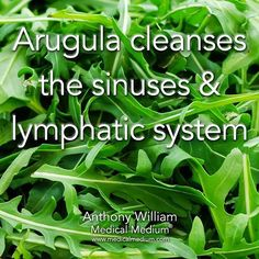 Arugula cleanses the sinuses & lymphatic system