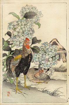старинные принты с птицами. Обсуждение на LiveInternet - Российский Сервис Онлайн-Дневников