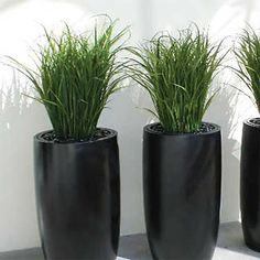 Lisbon Round Indoor/Outdoor Planter -  - Round Planter Pots - Jay Scotts Collection - Pots Planters & More - 3