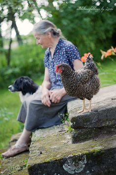 I would like to think of this as me when I grow old. Having only chickens as friends. Sitting in a field with chicken eating breakfast lunch and dinner with chicken my life = chickens Country Charm, Country Life, Country Girls, Country Living, Chickens And Roosters, Farms Living, Down On The Farm, Tier Fotos, Coops