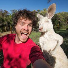 selfies engracadas com animais