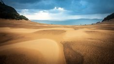 Textured Sands