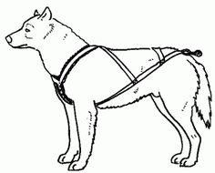Dog sled harness pattern