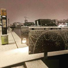 Fugl med en lille sne på. #lovecph #copenhagen #delditkbh #snevejr #sne #havnebus #københavnshavn #københavnerliv #densortediamant