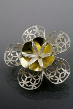 Youngjoo yoo,brooch,sterling silver,18k gold