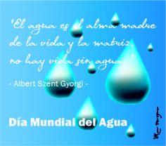 dia mundial del agua  http://marpereyradyc.blogspot.com