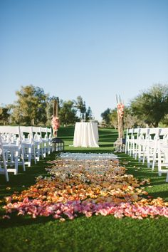 Ryan and Angela's AZ Wedding with an ombre carpet by Butterfly Petals (we'd need more covereage)