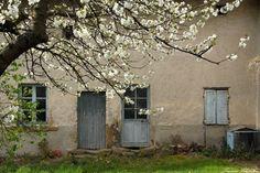 Le printemps éveille la maison abandonnée