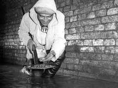 Image result for vienna sewer