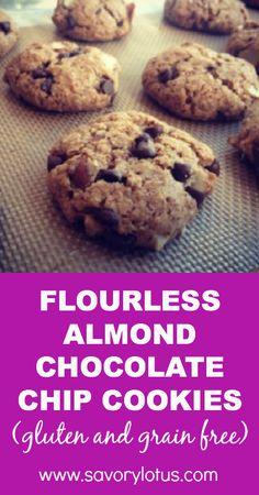 Flourless Almond Chocolate Chip Cookies (gluten and grain-free) - Savory Lotus Gluten Free Cookie Recipes, Paleo Cookies, Gluten Free Treats, Gluten Free Cookies, Gluten Free Baking, Whole Food Recipes, Almond Cookies, Free Recipes, Primal Recipes