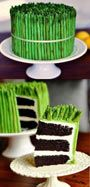 Stealth cake