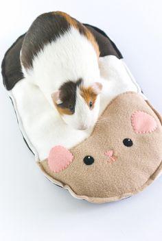 project // guinea pig cushion