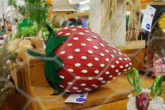 Pumpkin -- this is a pretty cool idea