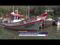 Aparecen 500 toneladas de sardinas muertas por causas desconocidas en un río de Chile - http://verdenoticias.org/index.php/blog-noticias-medio-ambiente/235-aparecen-500-toneladas-de-sardinas-muertas-por-causas-desconocidas-en-un-rio-de-chile