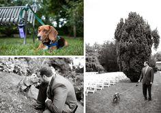 Groom walking dog before the wedding. Photo by Casey Fatchett - www.fatchett.com