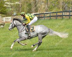 Middleburg Spring Races - Photos by Nancy Kleck ---   Glenwood Park, Middleburg VA ~Photos by Nancy Kleck ~ http://mbecc.com/nkleck  [/v... -  Check more at http://middleburgeccentric.com/2016/05/middleburg-spring-races-photos-by-nancy-kleck/