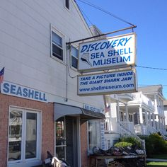 """Discovery Sea Shell Museum"" Ocean City NJ. I used to collect seashells down at my granddad's in NC & later in OC. But I also ""cheated"". This was a great place for shells and, while the shells sometimes cost serious money, at least I didn't need to classify them like I had to with my foundlings."