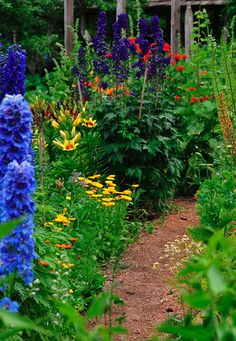 Path in the Hollyhock Garden on Cortes Island by GabriolaBill.