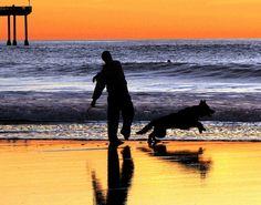 #Fetch the Stick, Dog Beach  Like,Repin,Share, Thanks! #beach http://pinterest.com/ahaishopping/
