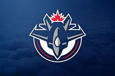 NHL Concepts by Quentin Brehler, via Behance