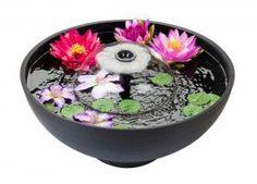 Fountain Pond redonda con flores (flores no incluidas en el producto)