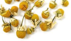 Chamomile Tea by Adagio Teas — Steepster Itchy Red Eyes, Organic Food Delivery, White Chrysanthemum, Natural Pain Relief, Types Of Tea, Chamomile Tea, Flower Tea, Herbal Medicine, Colors