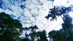 O céu é azul ou branco???