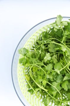 Why Freezing Is the Best Way to Preserve Cilantro — Herb Gardening 101 | The Kitchn