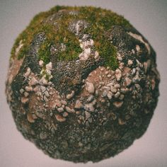 Ground, Mud and Moss Render Ball, Brian Recktenwald on ArtStation at https://www.artstation.com/artwork/m31xv