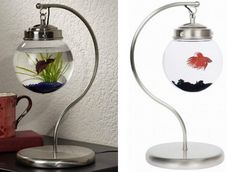 Spicytec: 20 Creative and unusual Fish Tank Aquariums