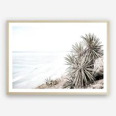 Add an impact on any wall with our Oceanside Photo wall decor art print from. Artwork Prints, Framed Art Prints, Poster Prints, Photo Wall Decor, Wall Art Decor, Beach Artwork, Stretched Canvas Prints, Canvas Frame, Paper Art