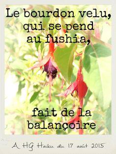 Été - Haïku-photo Fable, Poems, Messages, Crayon, Psycho Quotes, Texts, Personal Development, Poetry, A Poem