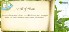 scroll of neem from GarnierPureActive neem revolution for pimple free skin Skin Burns, Neem Oil, Pimple, Face Wash, Revolution, How To Apply, Range, Pure Products, Free