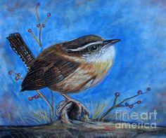 Bird lover gifts. Carolina Wren artwork and pillows.
