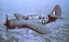 A Royal Australian Air Force A-25 Shrike dive bomber