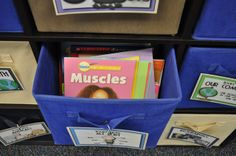 Creating Readers and Writers: The Best Part of the Classroom!  (Building a Classroom Library)