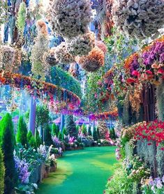 🔥 breathtaking gardens located in Singapore 🔥 : NatureIsFuckingLit Beautiful Places To Travel, Beautiful World, Beautiful Gardens, Wonderful Places, Magic Garden, Singapore Garden, Magic Places, Gardens By The Bay, The Places Youll Go
