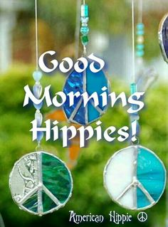 ☮ American Hippie ☮ Hippie Hippie Day ... Morning